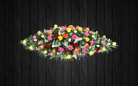 Rainbow Roses - CSK5