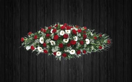 Roses & Gerberas - CSK8