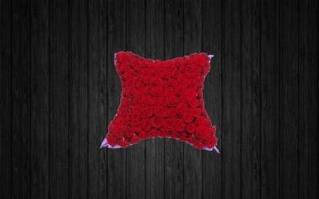 Red Rosa - CUS12