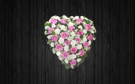 Aqua Heart - HEA4