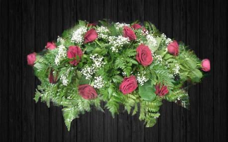 Pure Roses - SPR47
