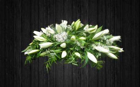 White Lily - SPR54