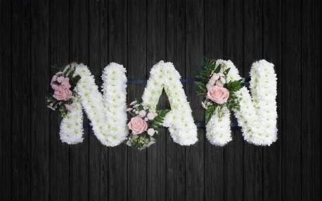 Pink Rose Nan - NAN14