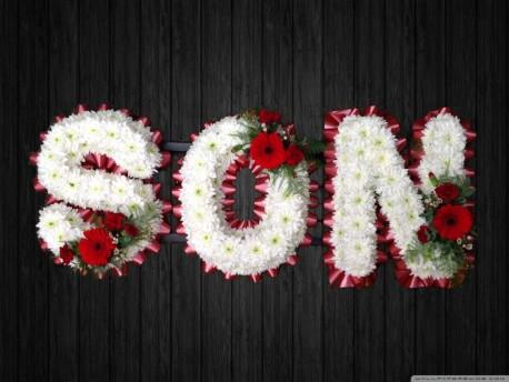 Maroon - SON19