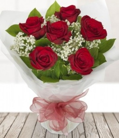 6 Red Roses with Gypsophila