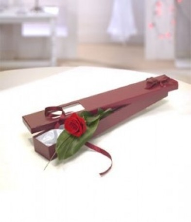 Single Red Rose Gift Box