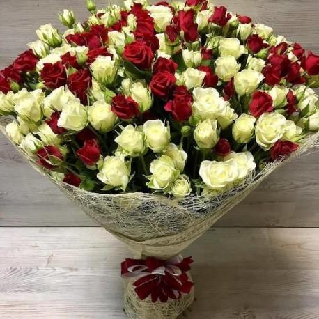 Red & White Spray Roses