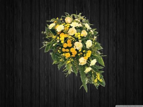 White & Yellow - SPR113