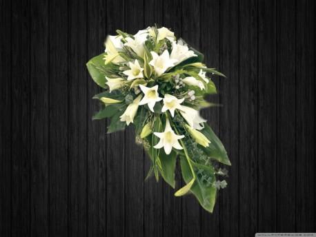 White Lily - SPR117