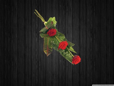 3 Red Rose - SHE10