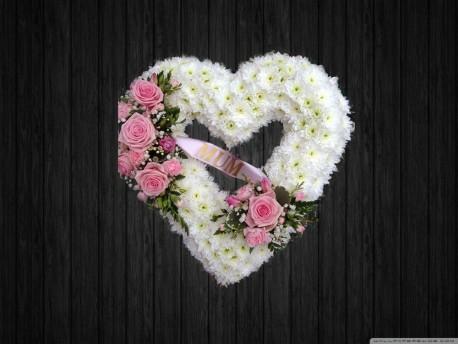 Kind Hearted - HEA100