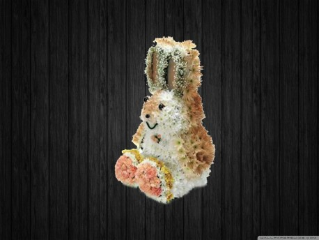 Sitting Rabbit 3D
