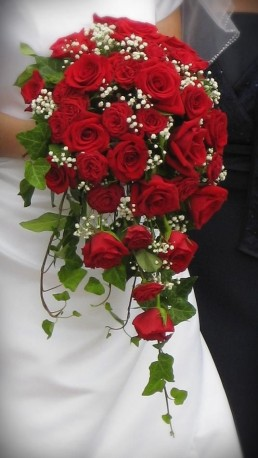 Red Rose Trailing Bridal