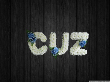Cuz - NAL8
