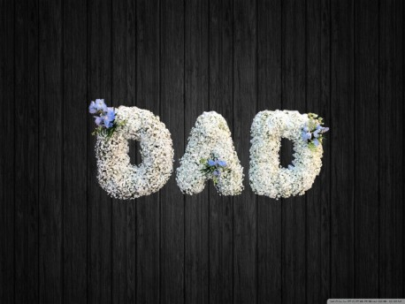 Gypsophilia Dad - DAD65