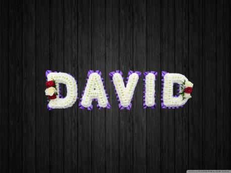 David - NAL20