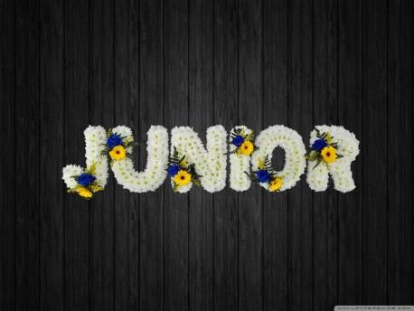 Junior - NAL23