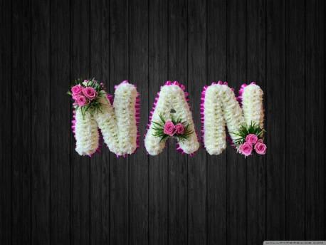 Pink - NAN45