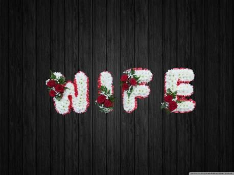Eternal Love - WIF6