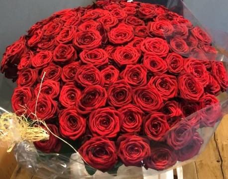100, 300, 500 Rosa Naomi