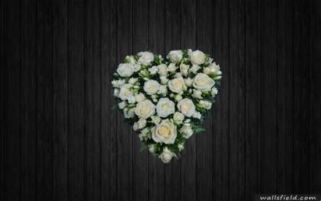 Bright Love - HEA128