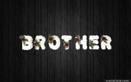 Brotherhood - BRO27