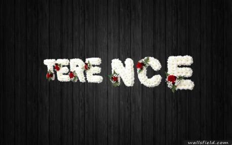 Terence - NAL42
