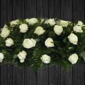 White Roses - CSK29