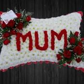 Mum In Reds - PIL25