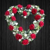 Open Love - HEA25