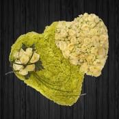 Lime & Ivory - HEA93
