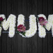 Shared Love - MUM17