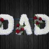 Naomi Roses - DAD33