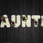 Adventure - AUN4
