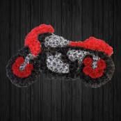 Motorbike 2D