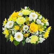 Yellow & White - POS71