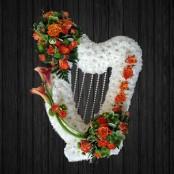 Harp Orange & White
