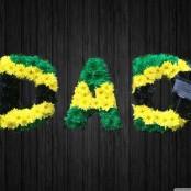 Jamaica - DAD50