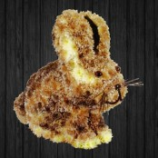 Standing Rabbit 3D