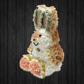 Sitting Rabbit 3D