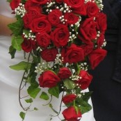 Red Rose Trailing Bridal