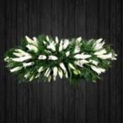Oriental Lilies - CSK50