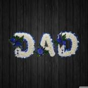 Champion - DAD56