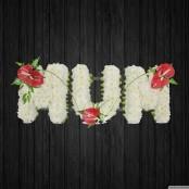 Gracious - MUM66