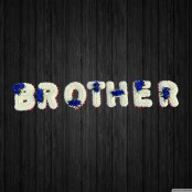 Blues Brother - BRO22