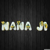 Nana Ji - NAN46