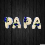 Papa - DAD71