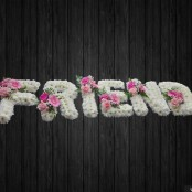 Friend - NAL36